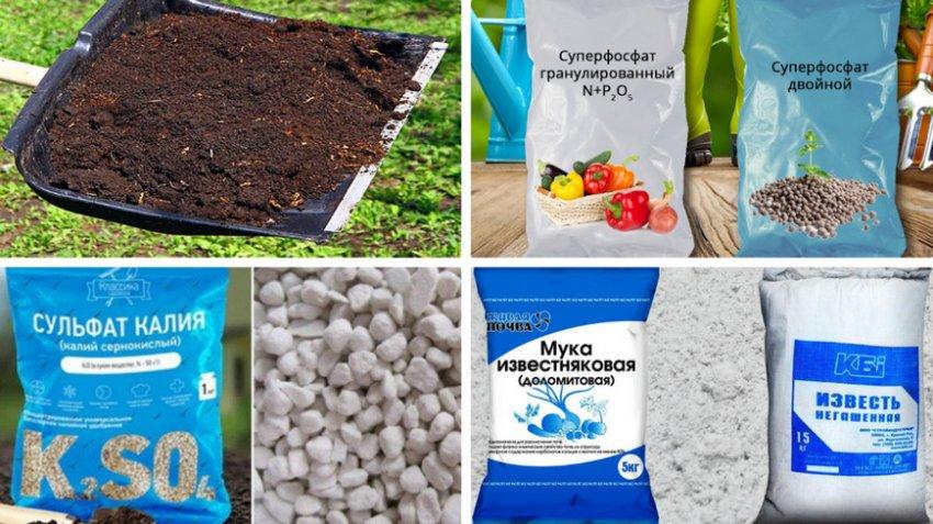 Препараты для подготовки почвы