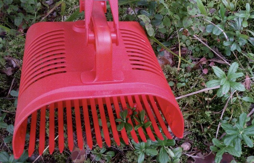 Инструмент для сбора брусники