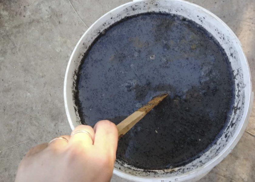 Раствор древесной золы для удобрения ежевики