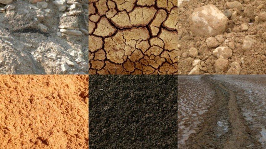 Типы почвы
