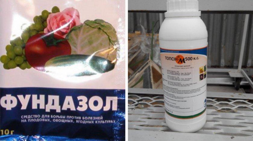 Препараты против микосферелиоза