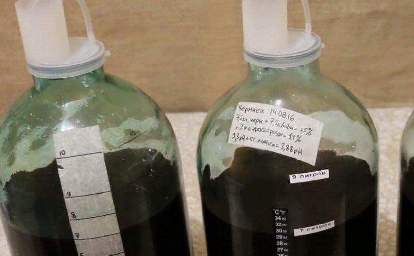 Вино из голубики в домашних условиях рецепт