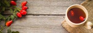 Настойка шиповника: от чего помогает и как ее правильно принимать