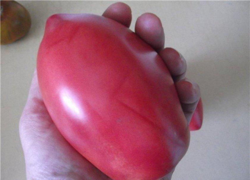 Помидр Розовый фламинго