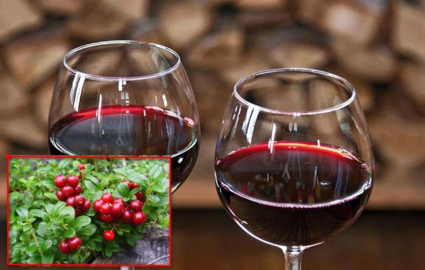 Вино из брусники в домашних условиях