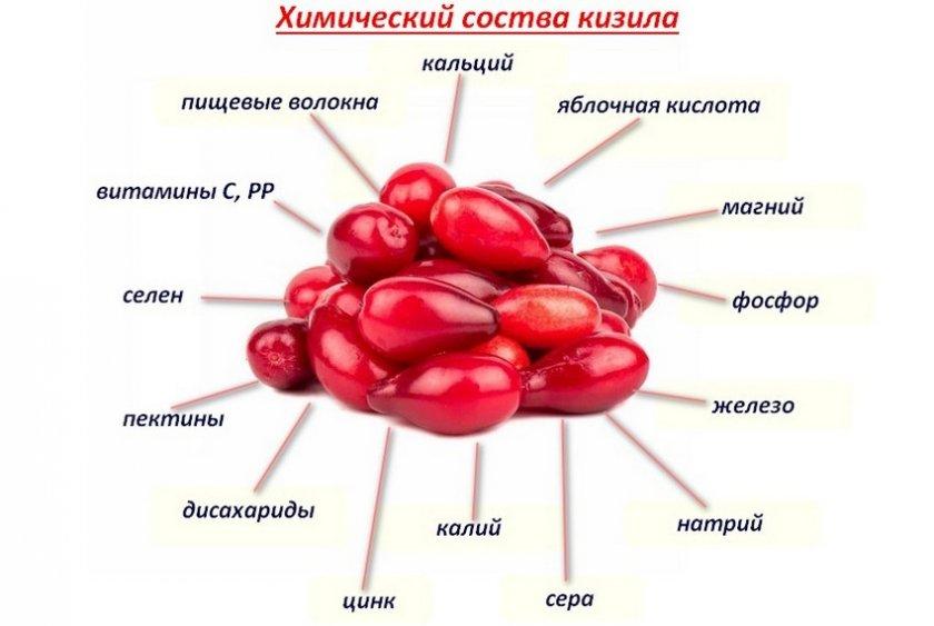 Химический состав кизила