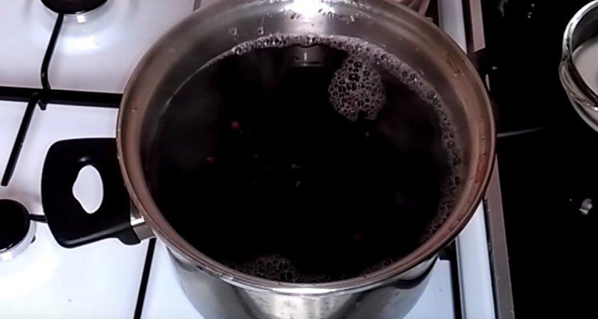 Компот из калины на зиму и нет – рецепты с яблоками или мёдом