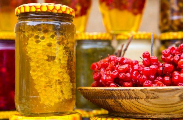 Калина с медом рецепты приготовления на зиму