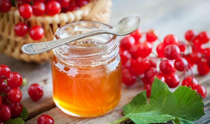Калина с мёдом