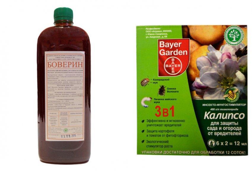 Препараты от Оленки мохнатой