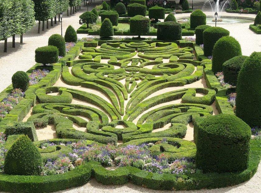 Сады Ватикана больше не обрабатывают химикатами