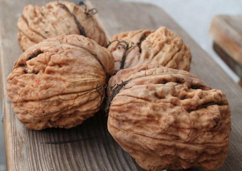 Плоды ореха Великан