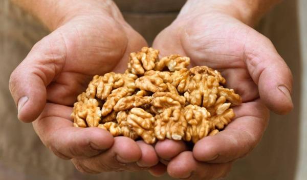 Чем полезен грецкий орех для мужчин: для потенции, полезные свойства, сколько можно есть