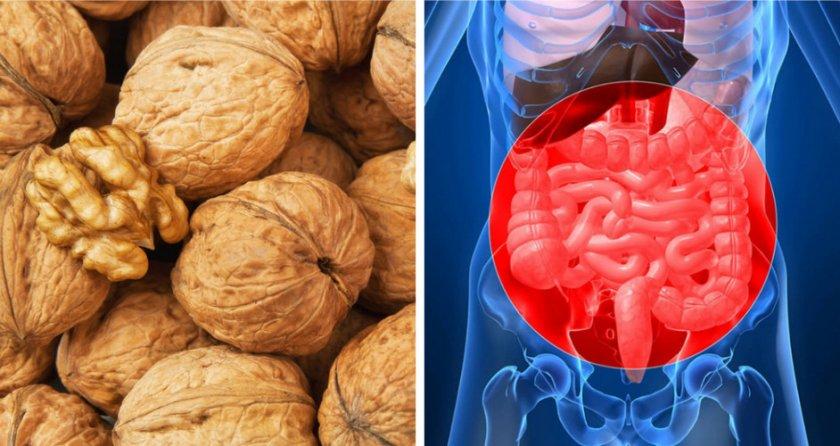 Грецкий орех при воспалении внутренних органов