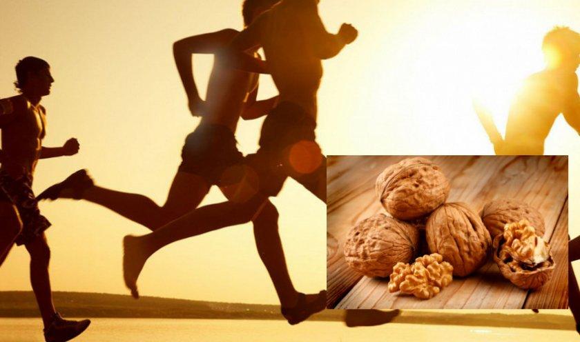 Грецкий орех при физических нагрузках