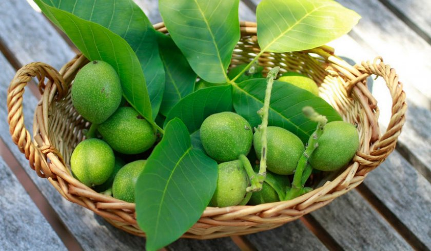 Зелёный грецкие орехи