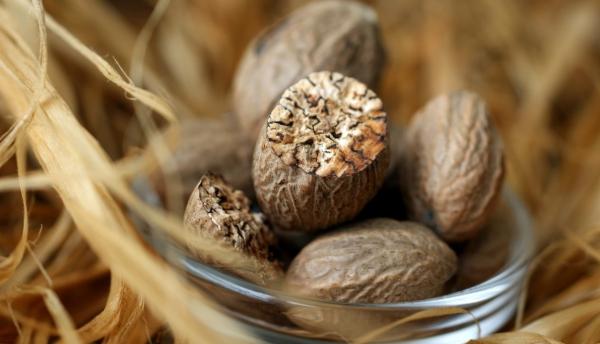 Мускатный орех - полезные свойства, применение, лечение