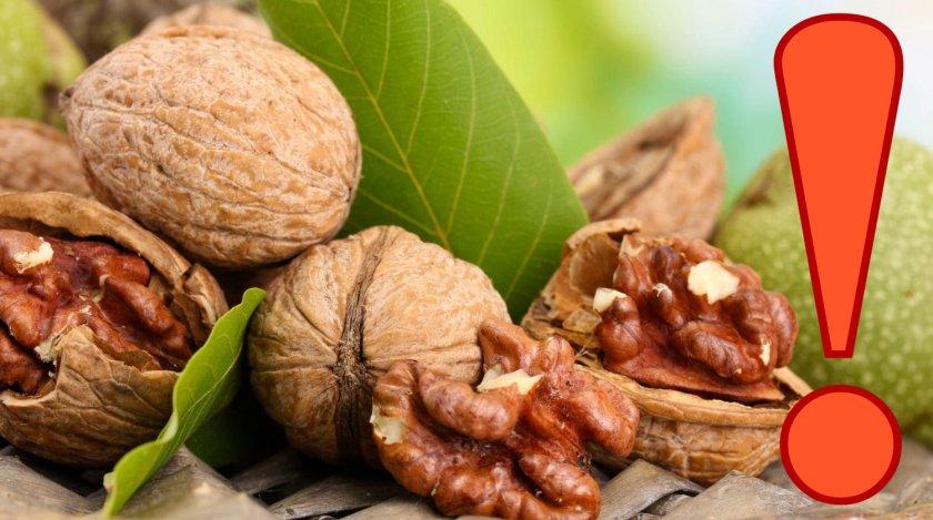 Противопоказания к употреблению грецких орехов при АД