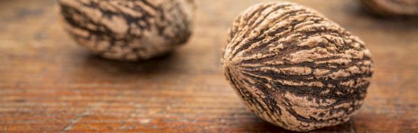 Как принимать черный орех
