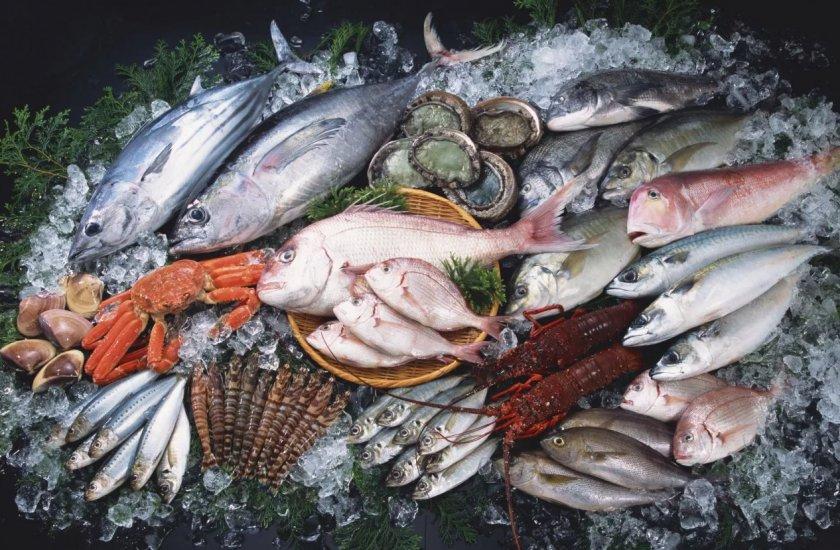 Новый завод снабдил Мурманскую область рыбным фаршем, вкусными стейками и рабочими местами