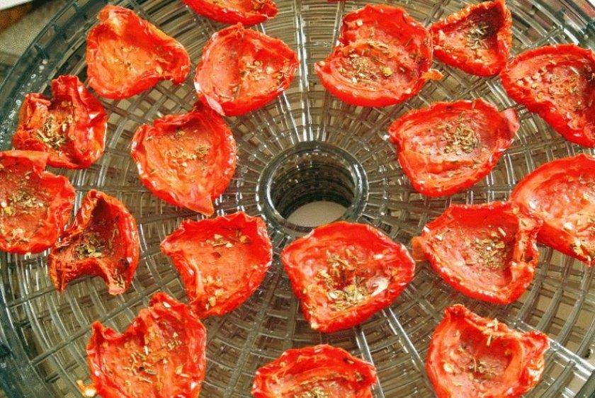 Сушка томатов в электросушилке