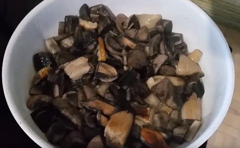 Сколько времени варить грибы подосиновики перед жаркой