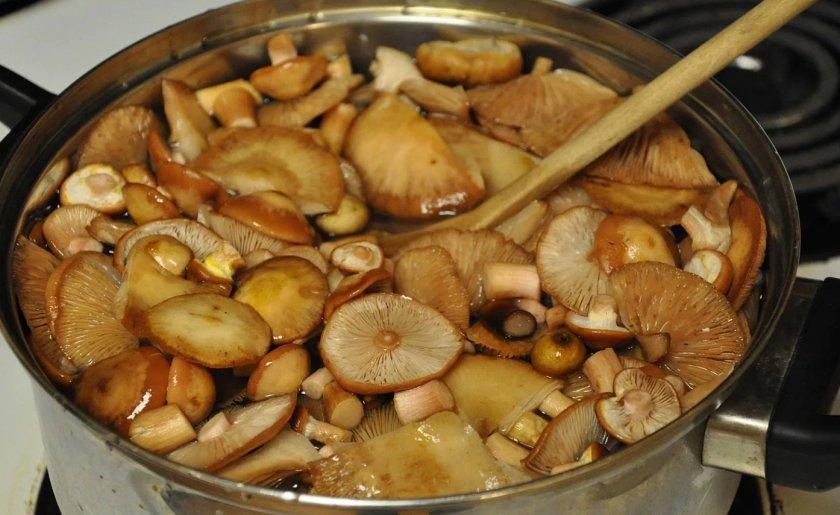 Отваривания грибов