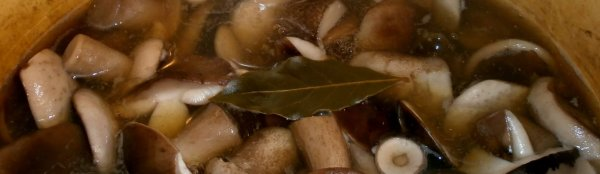 Сколько варить грибы белые и подберезовики
