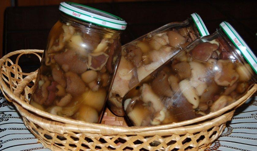 рецепт соленых грибов на зиму простой