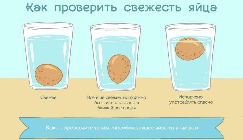Проверка яиц на свежесть