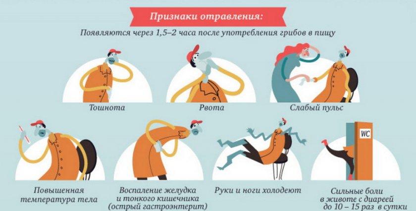 Признаки отравления грибов