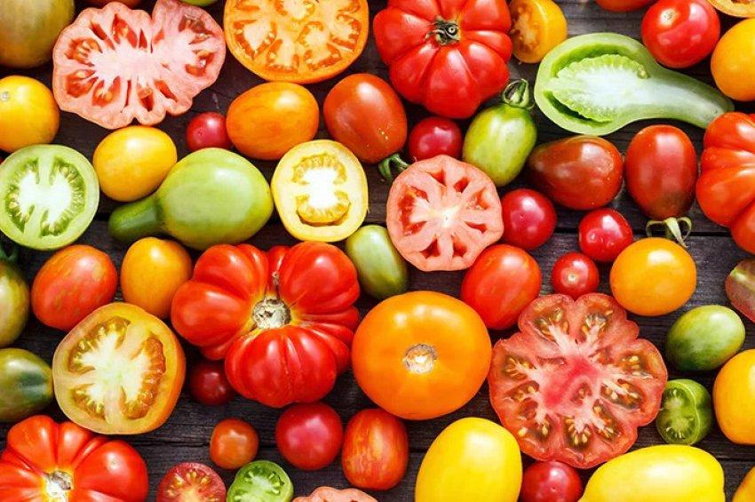 Дозревание томатов