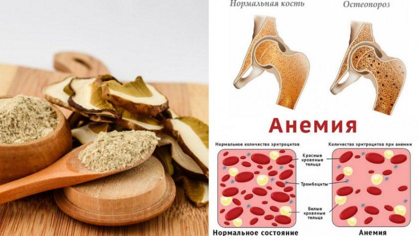 Мука из белых грибов для лечение болезней