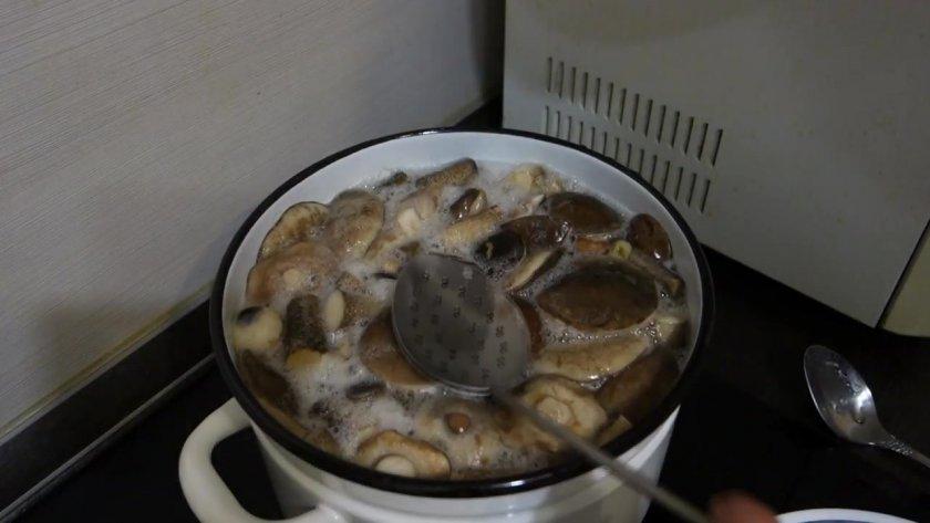 Как правильно готовить подосиновики и подберезовики. Как правильно варить грибы подосиновики и подберезовики?