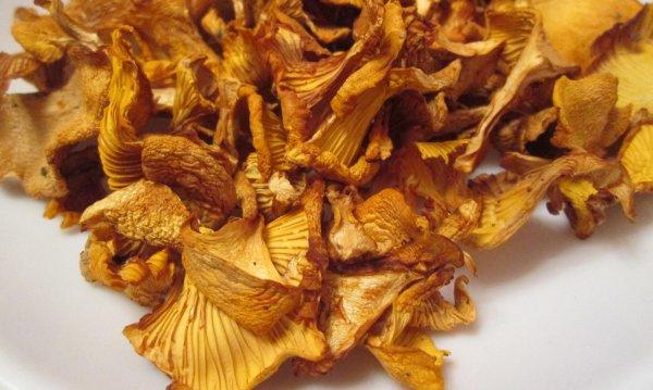 можно ли сушить грибы в духовке