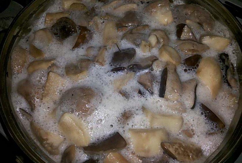 Как приготовить поддубники грибы