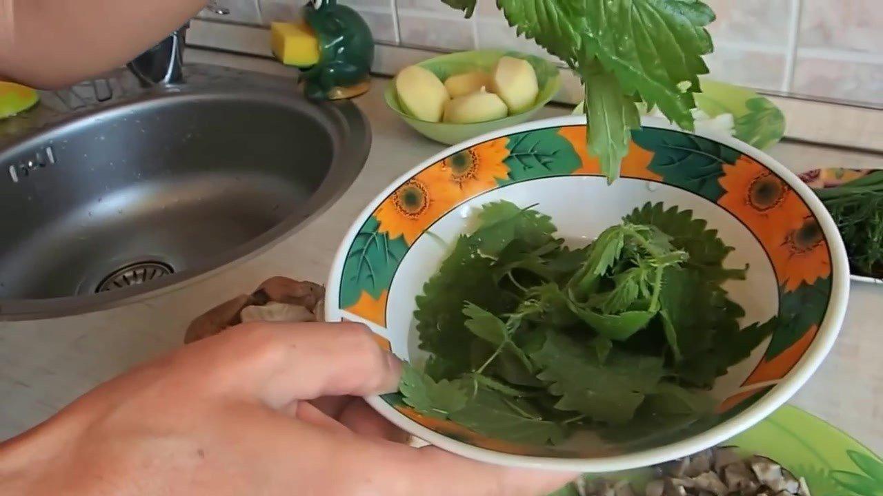 грибовница из свежих грибов калорийность