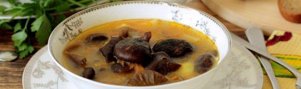 Грибной суп из лесных грибов рецепт с фото пошагово