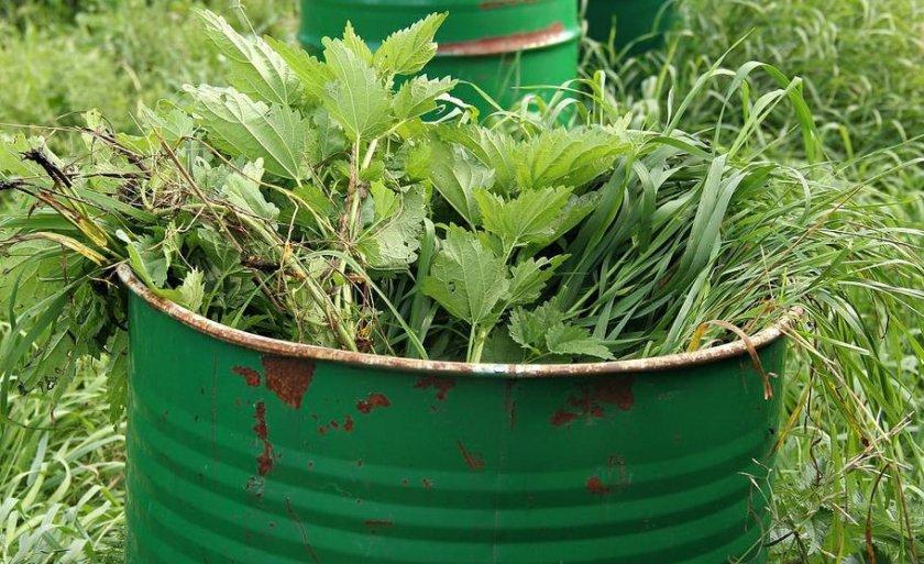 «Зеленое» удобрение