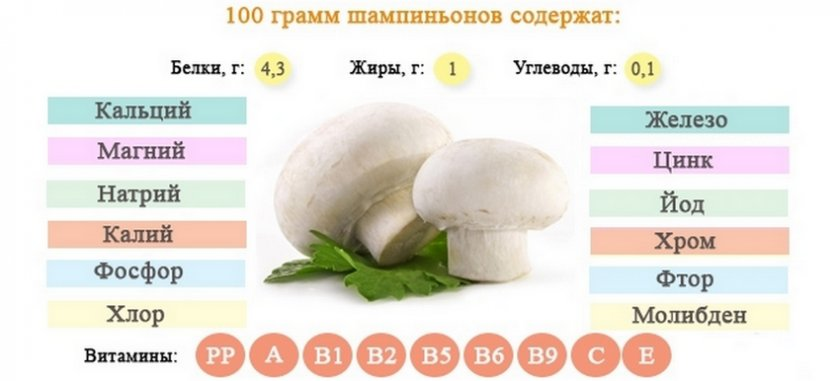 Состав шампиньонов