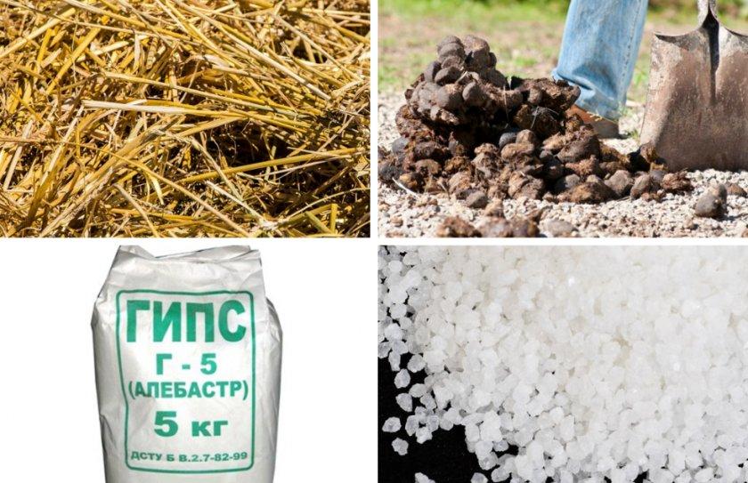 Состав компоста для выращивания шампиньонов