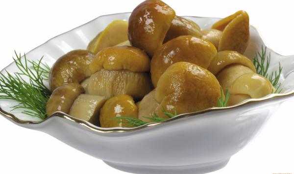 Польский гриб как готовить мариновать