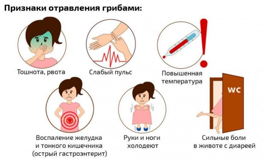 Можно ли отравиться вешенками: 4 основные причины, симптомы