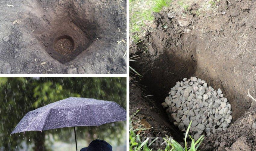 Подготовка почвы к посадке