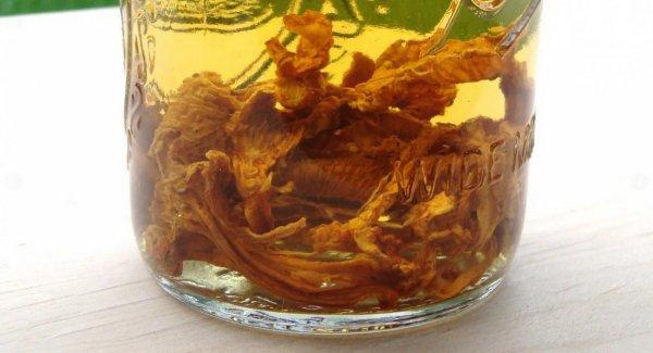 Настойки из лисичек на водке: 3 рецепта от разных болезней