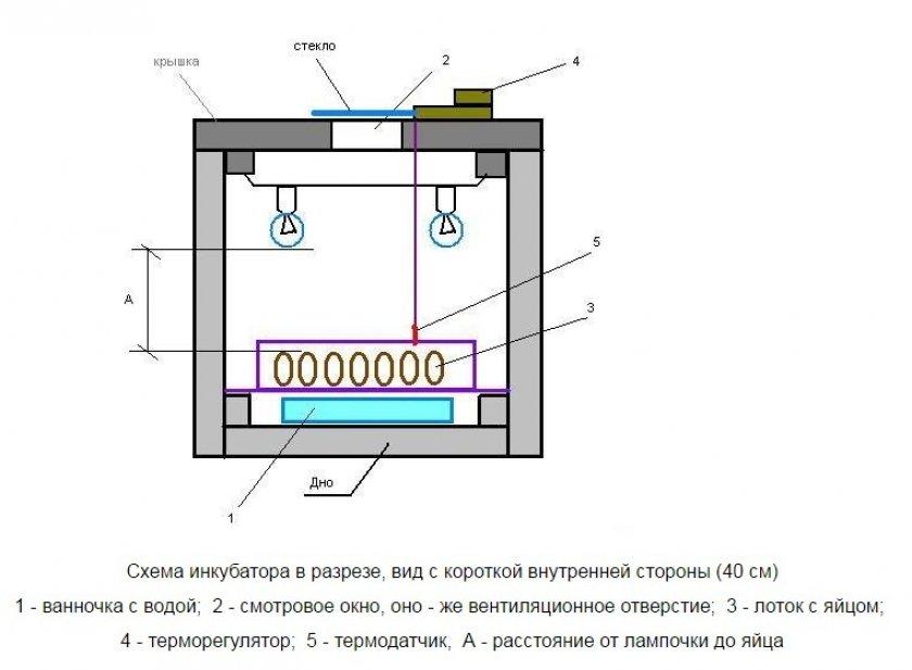 Схема инкубатора из пенопласта