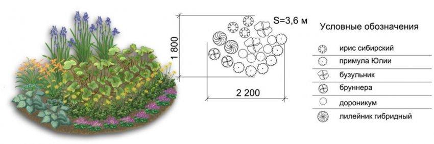 Схема цветов в ландшафтном дизайне