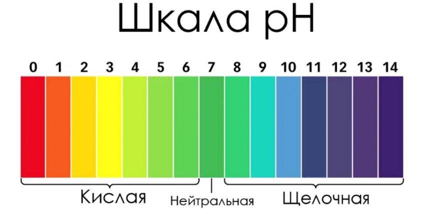 Шкала кислотности почвы