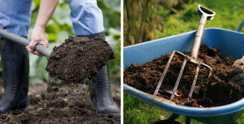 Перекопка и удобрение почвы