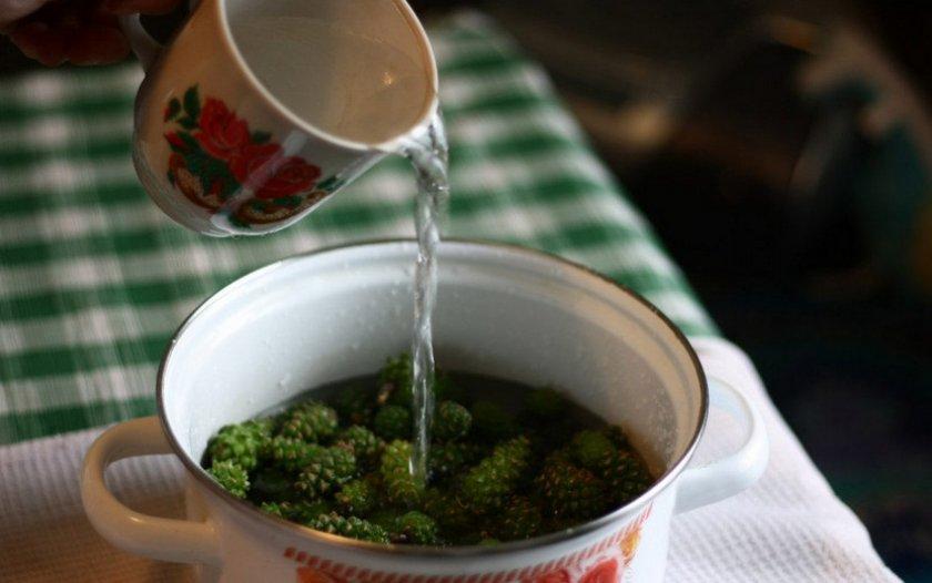 Рецепт от кашля с сосновыми шишками thumbnail